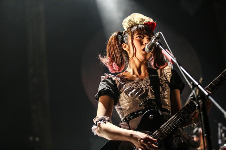小鳩ミク(G, Vo)(Photo by Shingo Tamai)