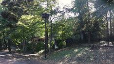 東京・井の頭恩賜公園
