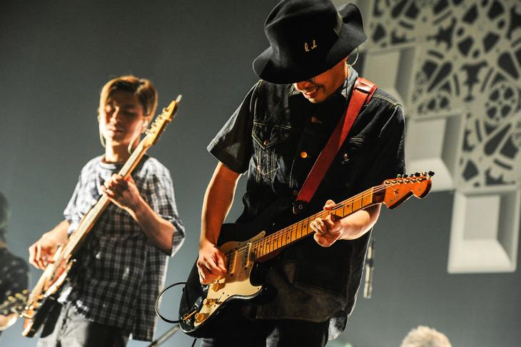 くるり「チミの名は。」東京・Zepp DiverCity TOKYO公演の模様。(撮影:岸田哲平)