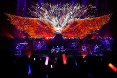 巨大な翼を背に歌う水樹奈々。(Photo by hajime kamiiisaka)