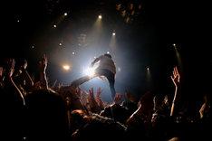 観客の上に立つヤマサキセイヤ(キュウソネコカミ)(photo by Viola Kam[V'z Twinkle])