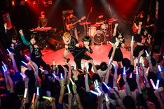「THE 夏の魔物登場!!!TOUR FINAL 6人体制初ワンマンGIG」の様子。(撮影:岸田哲平)