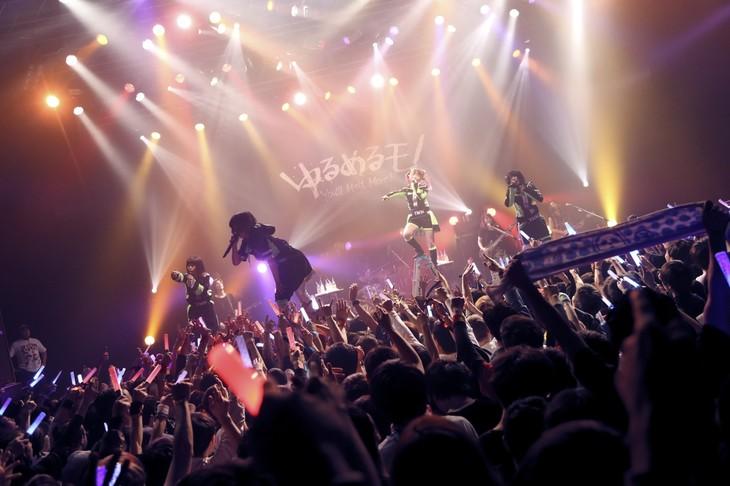 「孤独と逆襲 ~てえへんだ!底辺だ~ ツアー」東京・TSUTAYA O-EAST公演の様子。(撮影:後藤壮太郎)