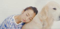 板野友美「#いいね!」MVのワンシーン。