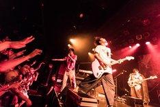 神聖かまってちゃん(Photo by Masayo)