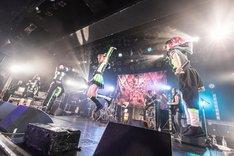 ゆるめるモ!(Photo by Masayo)
