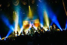 BRADIO「FREEDOM tour 2017」最終公演の様子。