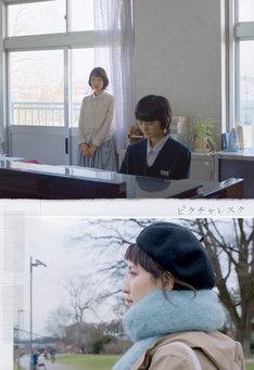 南壽あさ子 × 石川寛「ピクチャレスク」ジャケット