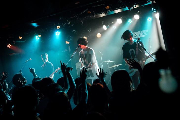 polly(Photo by Daisuke Miyashita)