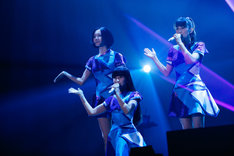 「Perfume FES!! 2017」幕張メッセ国際展示場2日目公演の様子。(撮影:上山陽介)