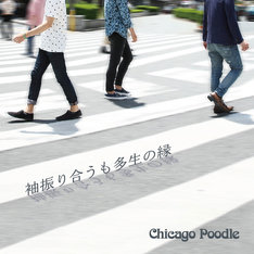 Chicago Poodle「袖振り合うも多生の縁」ジャケット