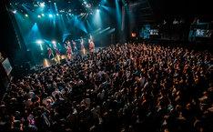 「predia release tour 2017 ~ワインとかけて、女と解く。その心は~」赤坂BLITZ公演の様子。(撮影:ヤマダマサヒロ)