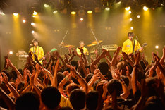 POLYSICS「POLYMPIC 2017」7月7日の東京・渋谷CLUB QUATTRO公演の様子。(撮影:酒井麻衣)