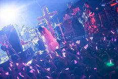 """大森靖子「2017 LIVE TOUR """"kitixxxgaia""""」東京・Zepp DiverCity TOKYO公演の様子。(Photo by Masayo)"""