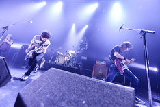 the pillows(撮影:橋本塁 / SOUND SHOOTER)
