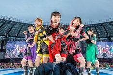 人気画像1位は「ももクロ、スポーツと融合した4年ぶり『夏のバカ騒ぎ』で味スタに10万人動員」より、ももいろクローバーZ。(Photo by HAJIME KAMIIISAKA+Z)