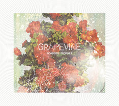 GRAPEVINE「ROADSIDE PROPHET」20th Anniversary Limited Editionジャケット