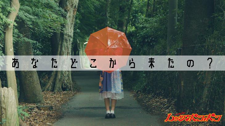 レッツポコポコ「あなたどこから来たの?」のミュージックビデオのワンシーン。