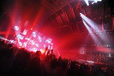 """スピッツ「SPITZ 30th ANNIVERSARY TOUR """"THIRTY30FIFTY50""""」最終公演の様子。(撮影:内藤順司)"""