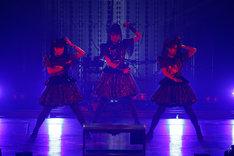 BABYMETAL(Photo by Tsukasa Miyoshi [Showcase])
