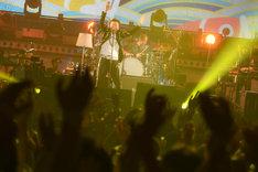 桑田佳祐「桑田佳祐 LIVE TOUR 2017『がらくた』」新潟・朱鷺メッセ・新潟コンベンションセンター公演の様子。