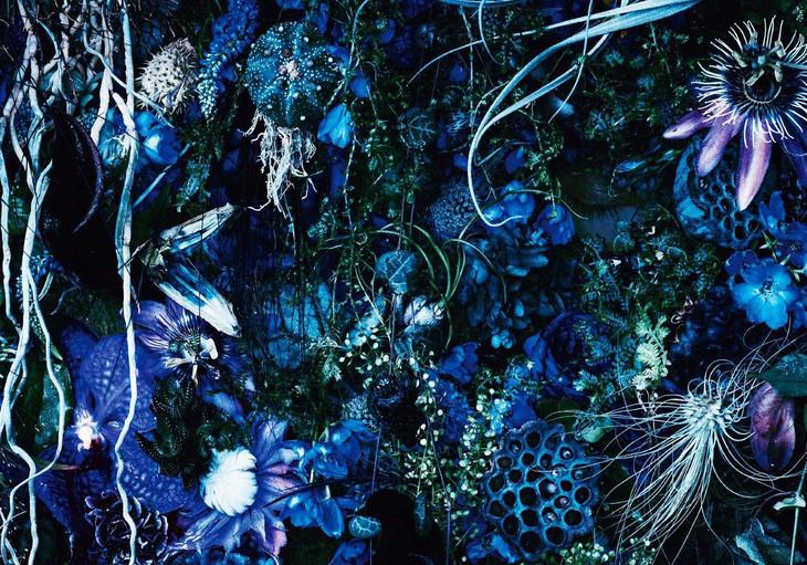 SUGIZO「ONENESS M」初回限定盤ジャケット