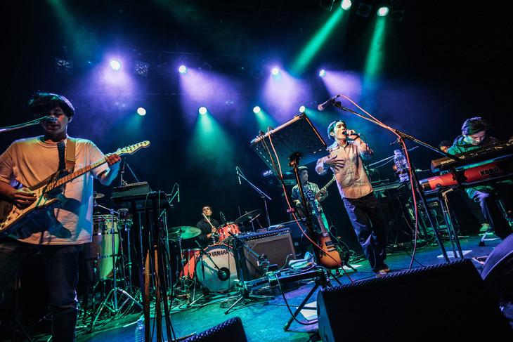 ceroのライブの様子。(Photo by Ray Otabe)