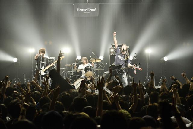 HAWAIIAN6(Photo by Rui Hashimoto[SOUND SHOOTER])