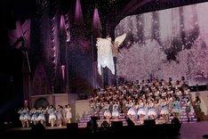 AKB48「渡辺麻友卒業コンサート~みんなの夢が叶いますように~」の様子。 (c)AKS