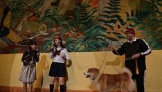 ステージ上で秋田犬と共演する小林歌穂(左から2番目)。(写真提供:SMEレコーズ)