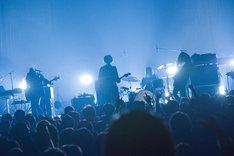 THE NOVEMBERS「TOUR - Before Today -」東京・マイナビBLITZ赤坂公演の様子。(Photo by Daisuke Miyashita)