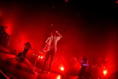 "「Suchmos ""TOUR FIRST CHOICE LAST STANCE""」東京・チームスマイル・豊洲PIT公演の様子。(Photo by Shun Komiyama)"