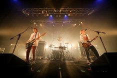 「REDLINE TOUR 2017」FOMAREのライブの様子。(Photo by Viola Kam [V'z Twinkle])