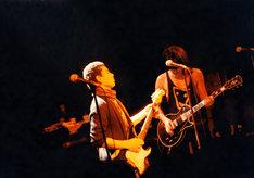 左から山口冨士夫、鮎川誠(SHEENA & THE ROKKETS)。
