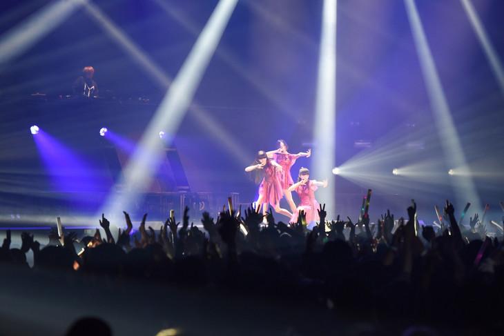 中田ヤスタカとPerfumeのコラボパフォーマンスの様子。