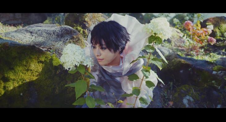 MONDO GROSSO「春はトワに目覚める(Ver.1)」ミュージックビデオのワンシーン。