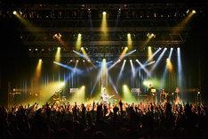 "MIYAVI「SAMURAI SESSIONS vol.2 発売記念ツアー""Day 2 Begins""」東京・Zepp DiverCity TOKYO公演の様子。(Photo by Yusuke Okada)"