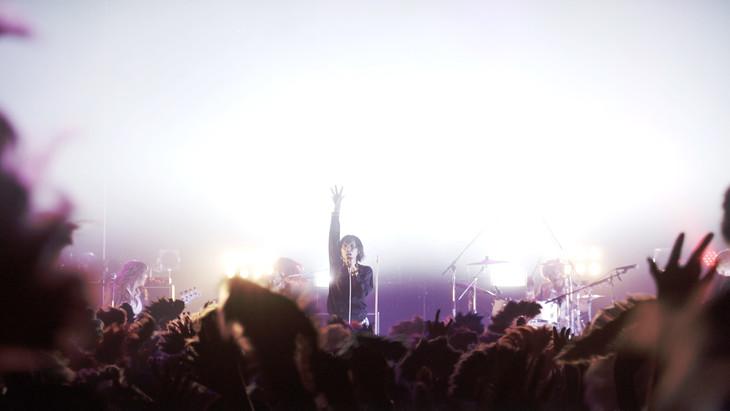 「女王蜂 全国ツアー2017『A』」東京・Zepp DiverCity TOKYO公演より「デスコ」ライブ映像のワンシーン。