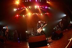 ZEPPET STORE(c)HEADWAX ORGANIZATION CO.,LTD.(Photo by nonfix creative[HIROYUKI UENO / HITOMI KATADA])