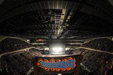 Hi-STANDARD「THE GIFT TOUR」埼玉・さいたまスーパーアリーナ公演の様子。(Photo by Yuji Honda)