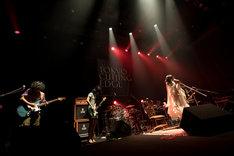 大森靖子のライブの様子。(Photo by Masayo)