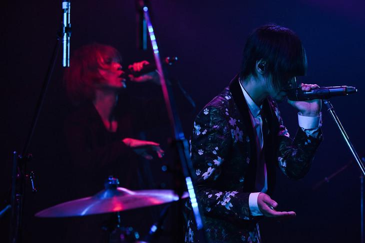 左からYOW-ROW、藤井麻輝。(写真提供:エイベックス)