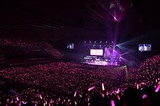「サクラあっぱれーしょん」で一面ピンクに染まった大阪城ホール。