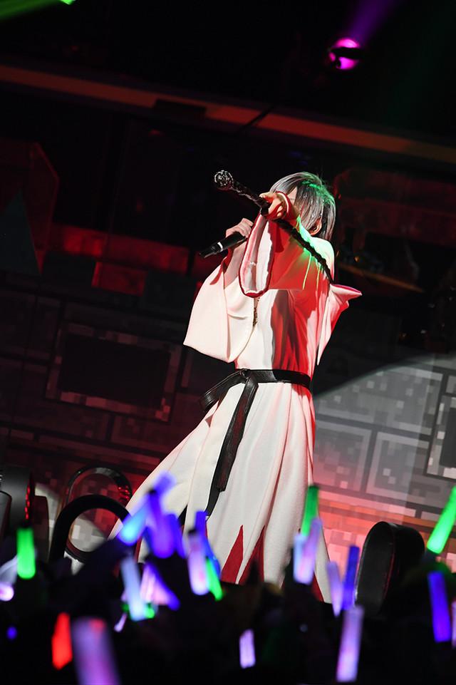 人気画像2位は「そらまふうらさか、25曲を届けた年越しライブで新年の幕開け祝う」より、まふまふ。(撮影:小松陽祐[ODD JOB]、岡本麻衣)