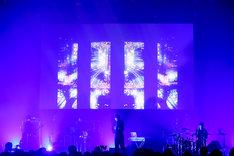 雨のパレード「ame_no_parade x LIVE TIPS Special Live presented by WOWOW」の様子。(撮影:西槇太一)