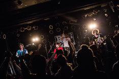 I-RabBits(Photo by Kaochi)