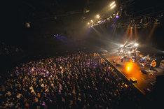 片平里菜「ライブハウスツアー2017-2018」東京・Zepp DiverCity TOKYO公演の様子。(撮影:山川哲矢)