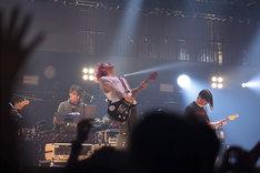 「Dragonash Live Tour MAJESTIC Final」の様子。