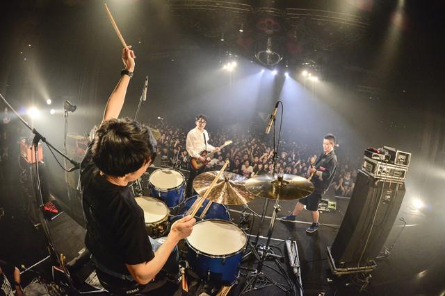 DOPING PANDA(撮影:橋本塁 [SOUND SHOOTER])