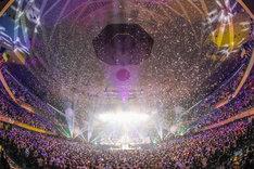 """東山奈央「1st LIVE """"Rainbow"""" at 日本武道館」の様子。(撮影:AZUSA TAKADA / タマイシンゴ)"""